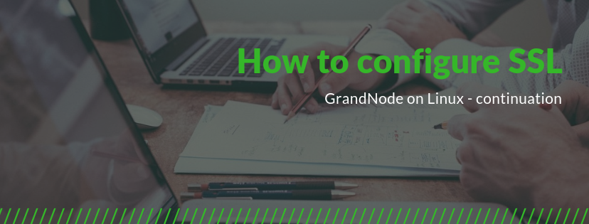 Picture for blog post How to configure SSL in GrandNode on Linux?